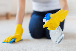Clean Rugs Like A Pro House Cleaning